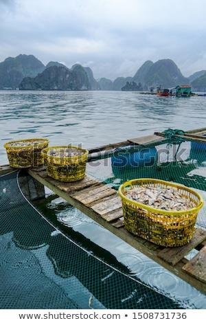 Hdr lövés ázsiai falu homok csónak Stock fotó © moses