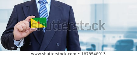 French Businessman holding business card with  France Flag Stock photo © stevanovicigor
