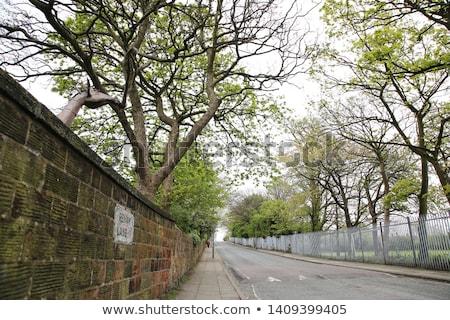 Penny Liverpool straat lied reizen Stockfoto © chrisdorney