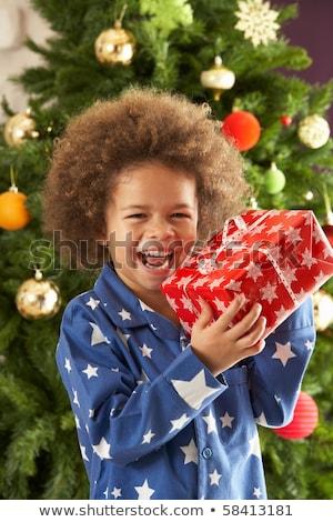 portret · jongen · christmas · aanwezig · kinderen · home - stockfoto © monkey_business