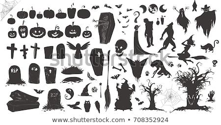 黒猫 · 棺 · 実例 · パーティ · 月 · 1泊 - ストックフォト © adrenalina
