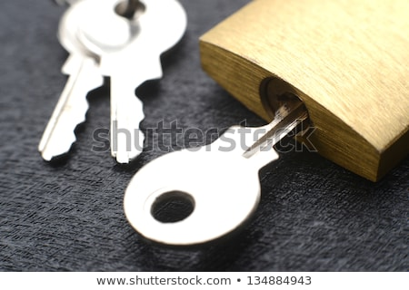 изолированный латунь блокировка ключевые макроса Сток-фото © njnightsky