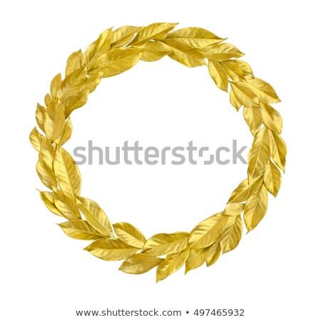 Gold laurel wreath isolated on white. Stock photo © Leonardi