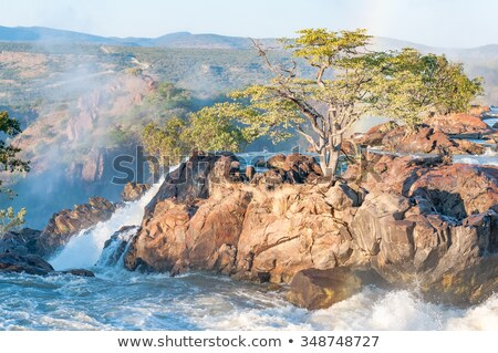 Kunene river, Namibia Stock photo © EcoPic
