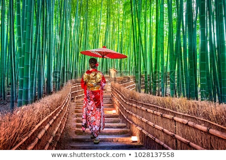 bamboo forest kyoto japan stock photo © jeayesy