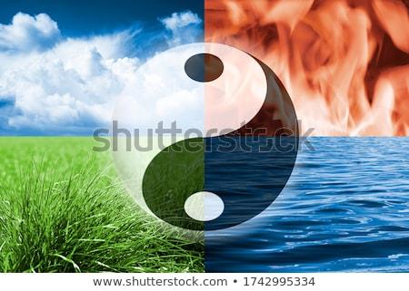 natural yinyang Stock photo © get4net