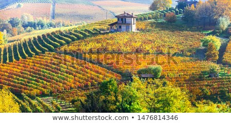 холмы Италия небольшой горные Сток-фото © rglinsky77