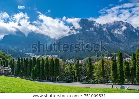 Parc Roumanie alpine paysages montagnes gamme Photo stock © photosebia