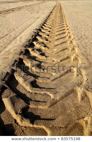 quad car tires footprint in beach sand Stock photo © lunamarina