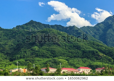 verão · paisagem · florescimento · montanha · vale · Geórgia - foto stock © kotenko