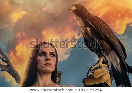 falconer girl at sunset Stock photo © adrenalina