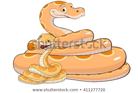 Kígyók család illusztráció baba esküvő szeretet Stock fotó © adrenalina