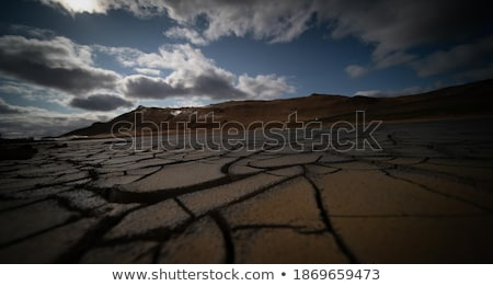 Dried irrigation ditch clay soil in Albufera fields Stock photo © lunamarina