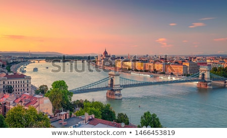 cityscape of budapest with danube river stock photo © kayco