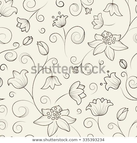 A light brown flower Stock photo © bluering