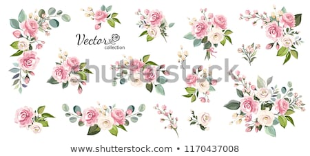 card template with pink flowers stock photo © bluering