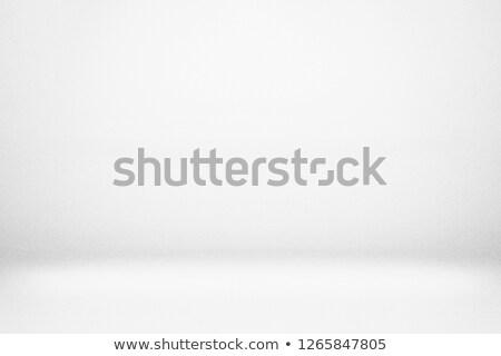 watercolor white background Stock photo © balasoiu