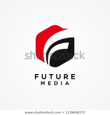 F betű hatszög logo elegáns modern oktatás Stock fotó © krustovin
