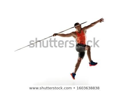 javelin isolated stock photo © albund