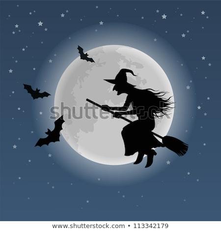 Stockfoto: Heks · vliegen · bezemsteel · halloween · silhouet · vriendelijk