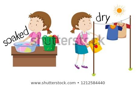 Inglês oposto palavra secar ilustração escolas Foto stock © bluering