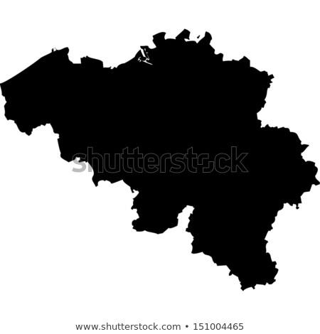 België kaart vector icon symbool vlag Stockfoto © blaskorizov