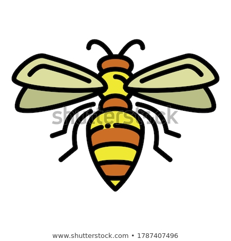 flying wasp vector icon stock photo © blaskorizov