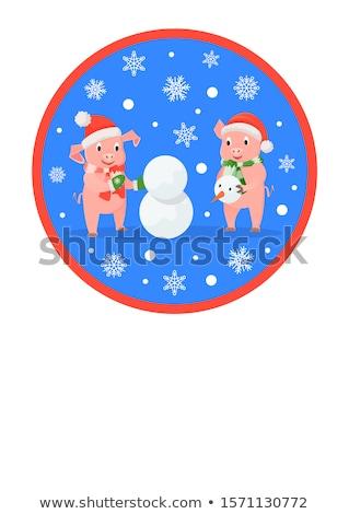 Рождества · снеговик · розовый · Cute · природы · вектора - Сток-фото © robuart