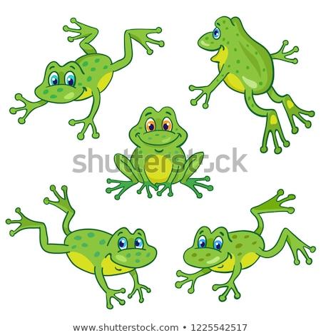 Vektör ayarlamak kurbağa gülümseme göz orman Stok fotoğraf © olllikeballoon
