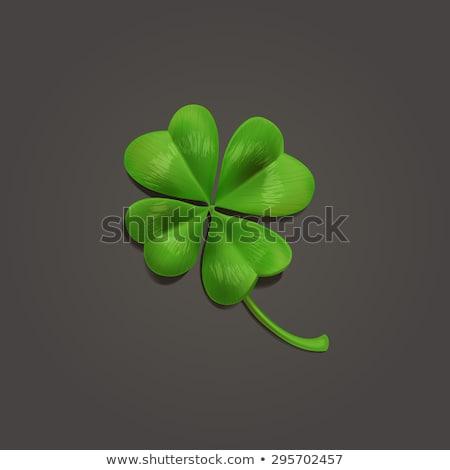 Foto stock: Trevo · folhas · escuro · feliz · projeto · verde