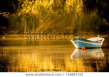Background scene with boat floating on the river Stock photo © colematt