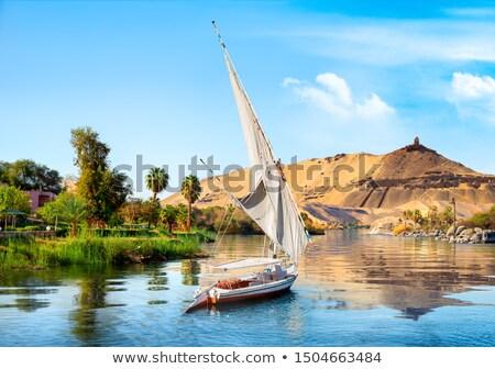 aswan and boats stock photo © givaga