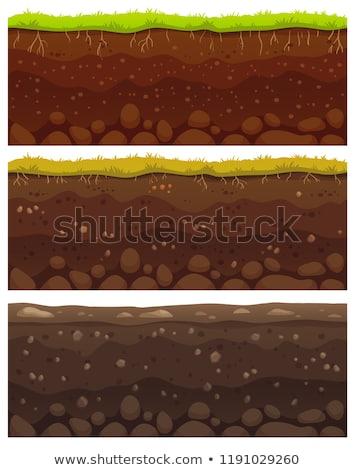 土壌 シームレス 層 地上 層 石 ストックフォト © Andrei_