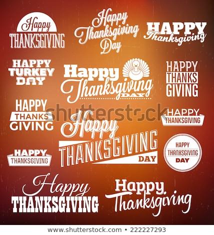 happy thanksgiving set stock photo © netkov1