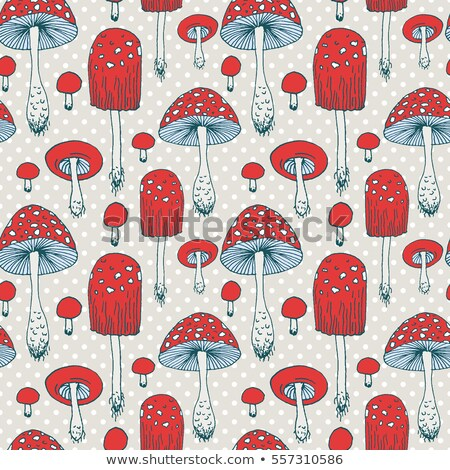 set of different mushrooms pattern stock photo © netkov1