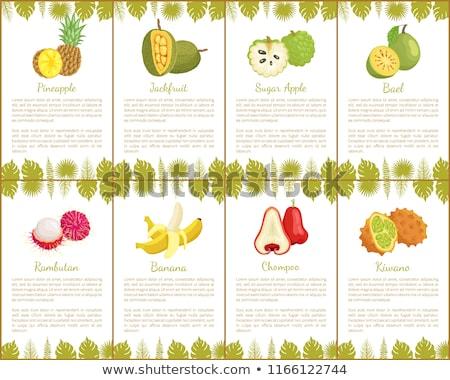 Photo stock: Banane · affiches · vecteur · texte