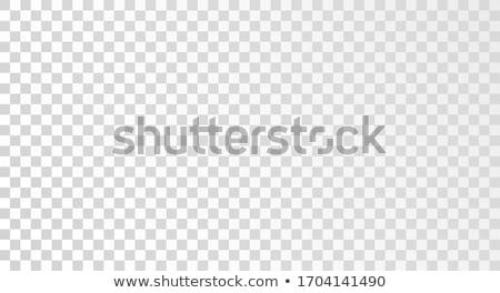 Transparent à carreaux géométrique gris blanche carrelage Photo stock © FoxysGraphic