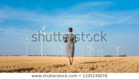 投資家 グリーンエネルギー 見える 風力タービン 立って スーツ ストックフォト © Kzenon