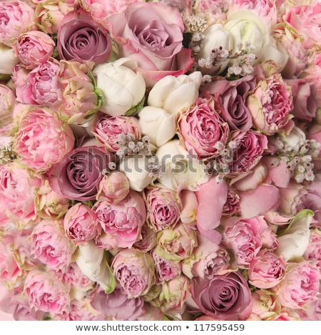 wedding bouquet from beautiful flowers pink roses white and pink ranunculus stock photo © ruslanshramko