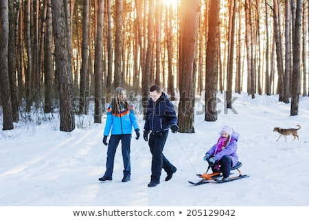 people with sleds play in the snow at sunset stock photo © adrenalina
