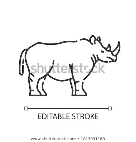 rinoceronte · icona · vettore · contorno · illustrazione · segno - foto d'archivio © pikepicture
