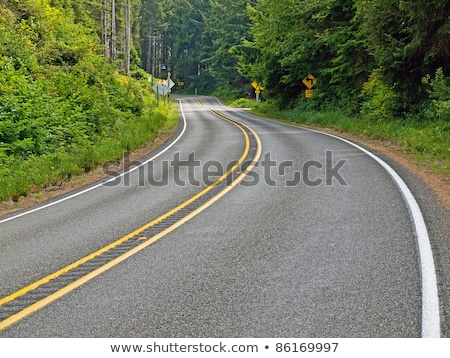 Curved Two Lane Country Road Winding Through a Forest Stock photo © Frankljr