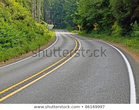 lege · twee · asfalt · weg · snelweg - stockfoto © frankljr
