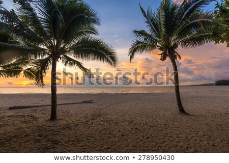 Nai Yang beach at dusk. Phuket island, Thailand. Stock photo © moses