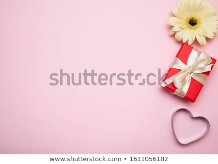 rosa · Daisy · flor · aislado · blanco · belleza - foto stock © posterize