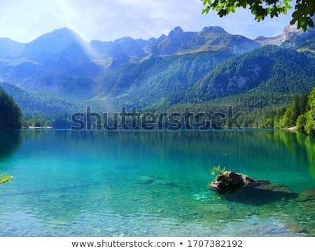 Lago Tovel Stock photo © Antonio-S