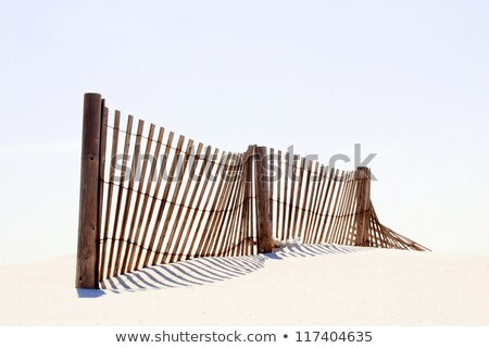 beach fence stock photo © chrisbradshaw