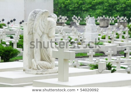 grieving angel on the military cemetery Stock photo © Photocrea
