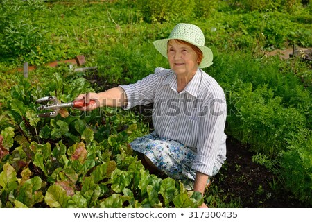 Elderly woman in the garden with  pitchfork Stock photo © Pasiphae