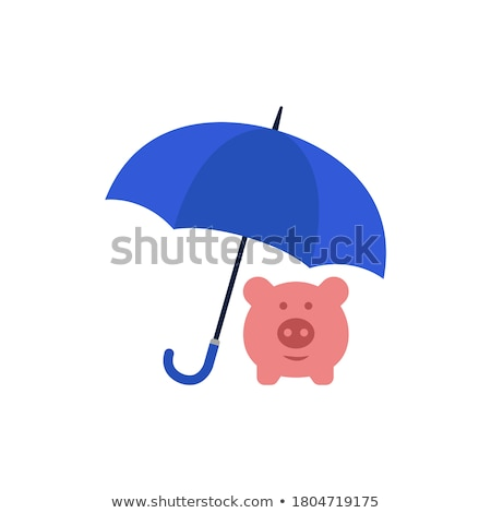 Piggy bank and dollar coins under a  umbrella	 Stock photo © 4designersart